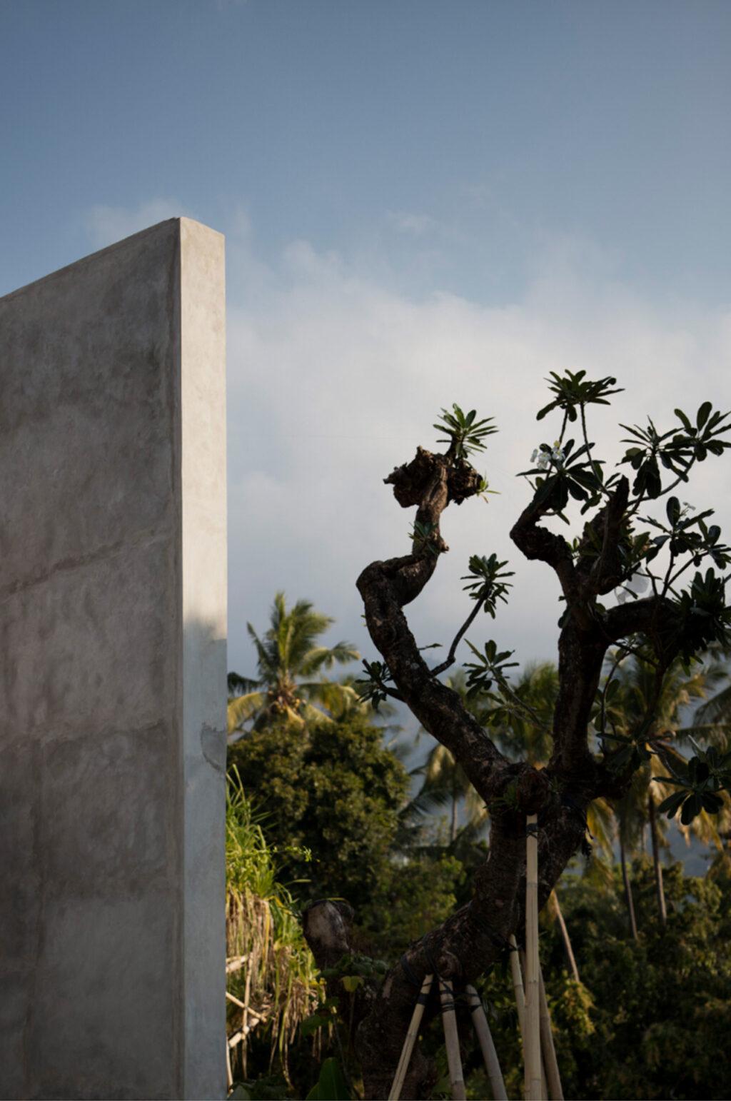 SOUQ Design Project The Tiing Resort Tejakula Bali 15